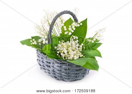 Bouquet of white lily of the valley (Convallaria majalis) in basket on white background.