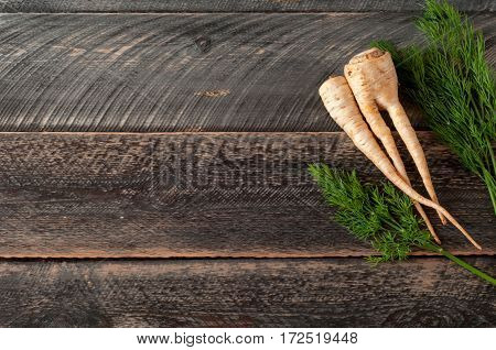 Fresh parsley root parsnip and dill on wooden background. Selective focus