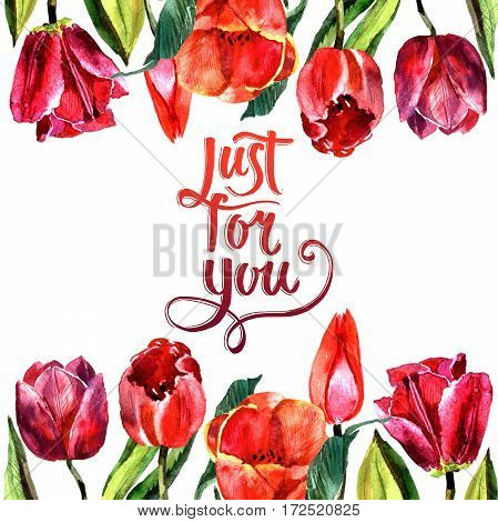 Wildflower tulip flower frame in a watercolor style isolated. Full name of the plant: red and pink tulips. Aquarelle wild flower for background, texture, wrapper pattern, frame or border.