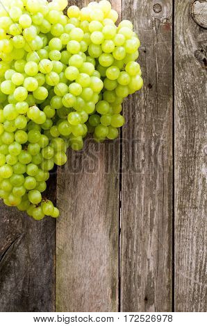 Fresh green grapes on old wooden background. rustic style