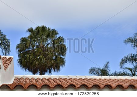 Close-up of a tiled roof with a palm and blue sky in background picture from Puerta de la Cruz Tenerife Spain.