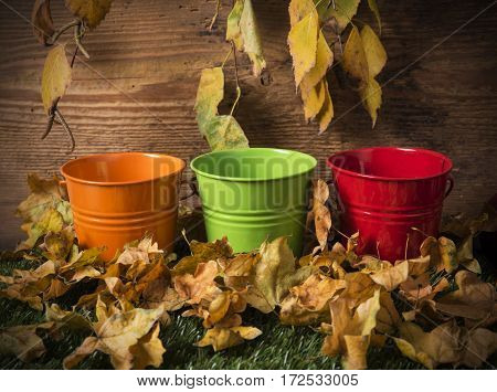 Multicolour bucket on the grass with fallen leaves