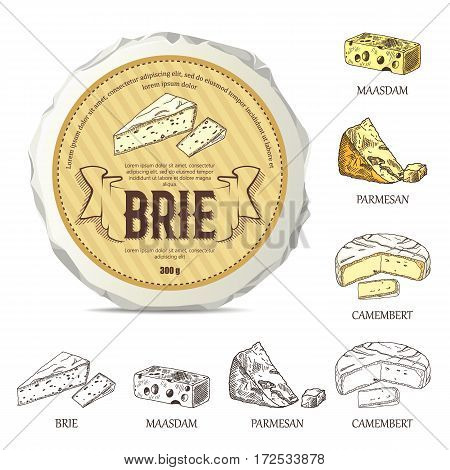 Creative sticker for brie on round cheese mockup. Vector illustration with vintage label. Hand drawn template used for advertising cheese and graphic icons good for logo design or emblem creation.