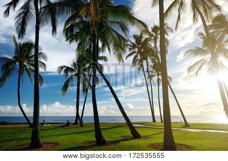 Sunrise With Palm Trees In Salt Pond Beach Park On Kauai