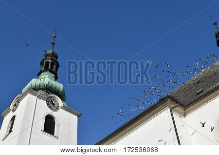 A flock of pigeons flies from the roof of the church