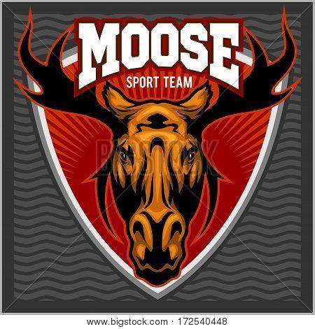 Moose Head - sport team logo. Vector illustration.