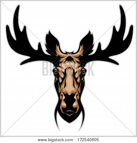 Moose head - isolated on white background. Vector illustration.