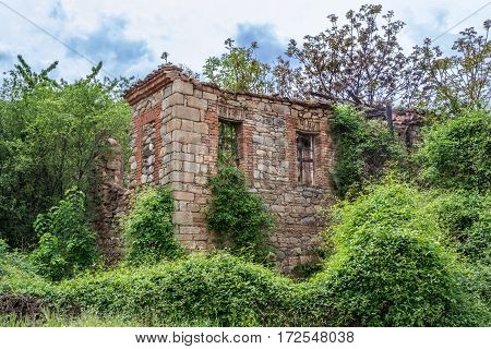 Old abandon house overtaken by force nature