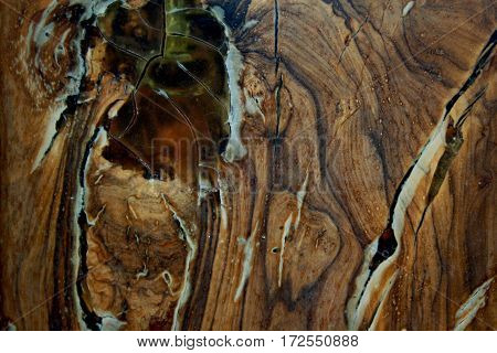 close up shot of wood texture background