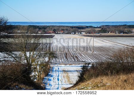 Early springtime in the fields at the swedish island Oland in the Baltic Sea