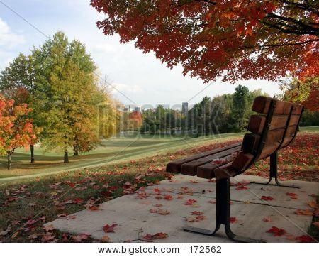 Fall_overlookcity