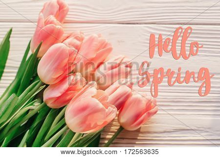 Hello Spring Text Sign On Beautiful Pink Tulips On White Rustic Wooden Background. Flowers In Soft M