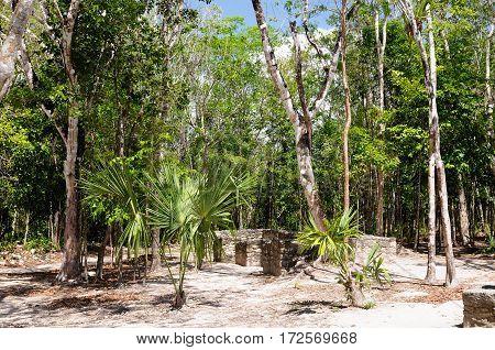 Coba - Pre-Columbian city of Mayans on the Jukatan Peninsula