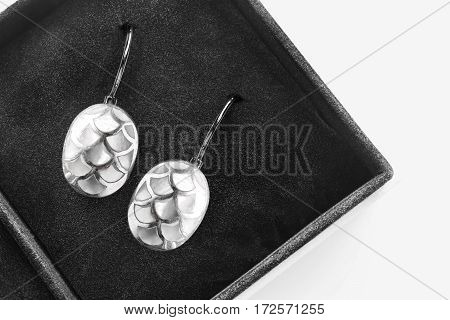 Elegant silver nacre earrings in black jewel box closeup