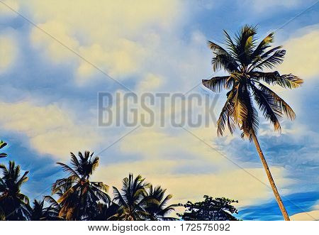 Palm tree garden and yellow sunset sky landscape. Digital illustration of tropic nature. Exotic forest with coconut palms. Tree silhouettes. Coco palm tree background with text place banner template