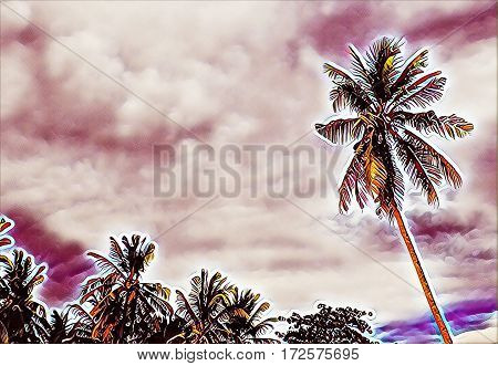 Palm tree garden and cloudy sky landscape. Digital illustration of tropical vacation. Relaxing view of coconut palms. Exotic forest. Tree silhouettes on sunset. Coco palm tree image with text place