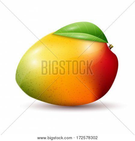Mango icon in flat style. Isolated object. Mango logo. Vector illustration on white background