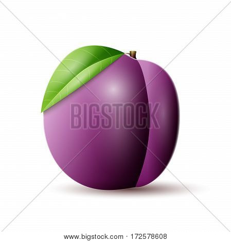 Plums vector icon. Plums vector object isolated on white background. Fresh and juicy fruit.