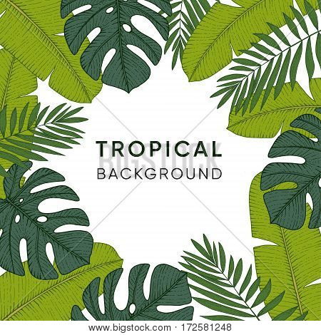 Frame made of hand drawn tropical palm banana and monstera leaves. Engraving design. Botanical vector illustrations exotic jungle background.