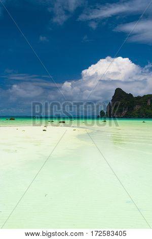 Serene Waters Lagoon Landscape