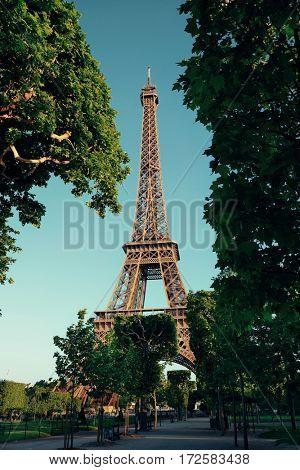 Eiffel Tower in park as the famous city landmark in Paris