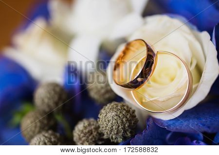 Wedding rings on white and blue flowers background wedding bands infinity sign of the rings