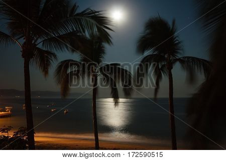 Moonlit night on the Pacific coast of Mexico