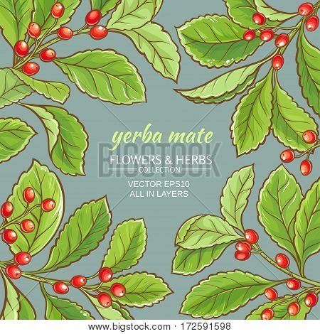 yerba mate vector frame on color background