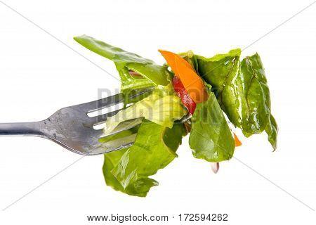 healthy salad bite on fork white background