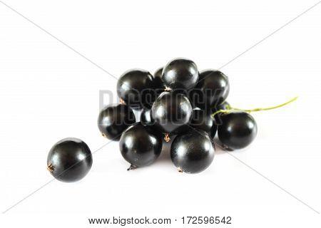 Large ripe berries of black currant. Ripe fruit. Close-up.