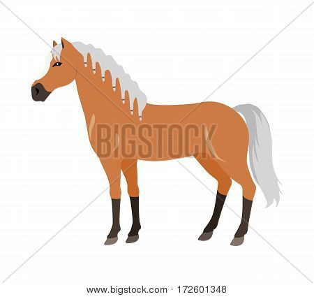 Red horse with white white mane vector. Flat design. Domestic animal. Country inhabitants concept. For farming, animal husbandry, horse sport illustrating. Agricultural species. Isolated on white