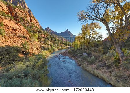 a scenic landscape along the Virgin River in Zion National Park Utah in autumn