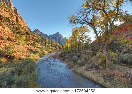 the scenic landscape of Zion National Park in autumn