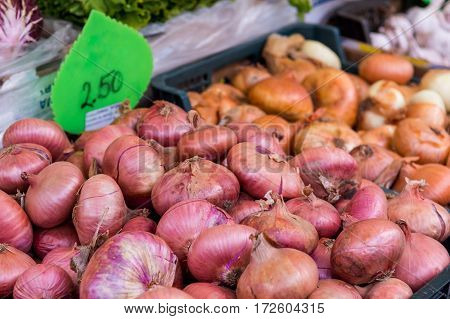 Closeup of onions being sold. Outdoor city market.