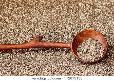 Chia seeds in a wooden spoon. Concept of detox and healthy eating. For background, backdrop, substrate, composition use. Copyspace