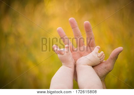 Bare feet of a cute baby on the summer background. Childhood in the farm. Small bare feet of a little baby girl. Mother holding baby feet.