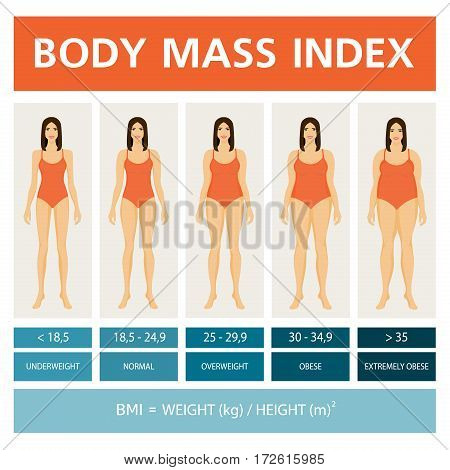 Body Mass Index Illustration with women figures. Obesity stages. Infographics