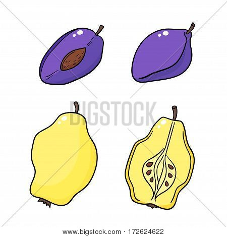 Quinces and plums isolated on white background.