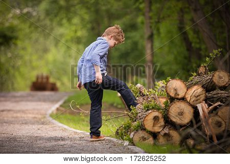 Cute kid boy walking in the park and playing with cut trees. Child outdoors. Active children. Lifestyle concept.