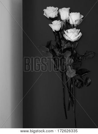 Still life with white roses on dark background, black and white