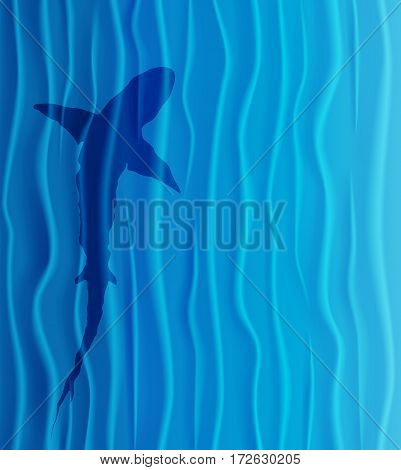 Shark silhouette in blue water. Vector Illustration.