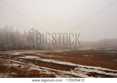 field with little snow and forest with fog