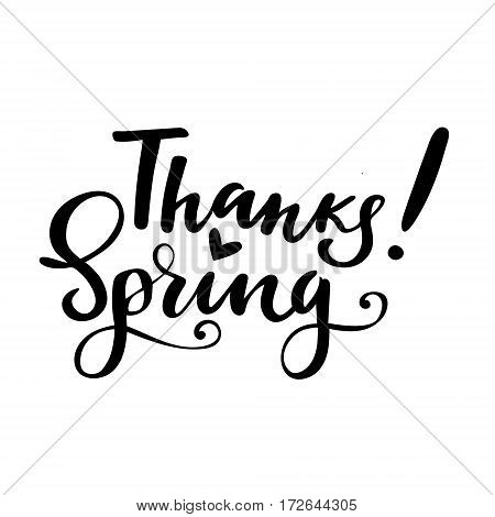Thanksgiving greeting card with phrase: Thanks spring. Vector isolated illustration: brush calligraphy, hand lettering. Inspirational typography poster