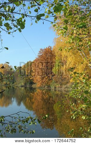 Pond In Autumn, Yellow Leaves, Reflection Autumn Yellow Wood Lake