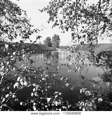 Leaves On The Branches In Front Of Long Pond At Summer