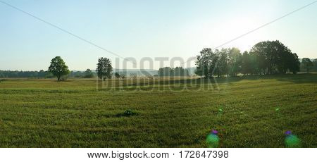Green Empty Field With Trees And Lens Flare