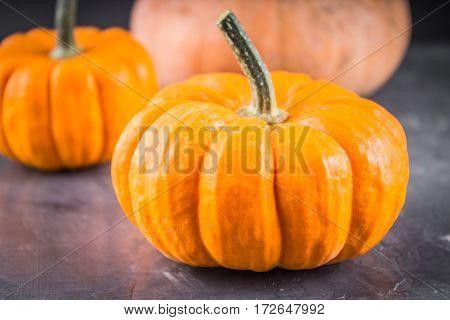 Orange Decorative Pumpkins On A Gray Background