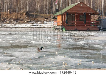 House On The Frozen River With Forest In Background