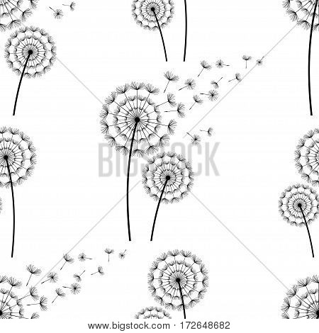Beautiful white seamless pattern with black stylized dandelion silhouette and flying fluff. Floral light background with spring or summer flowers. Stylish trendy nature wallpaper. Vector illustration