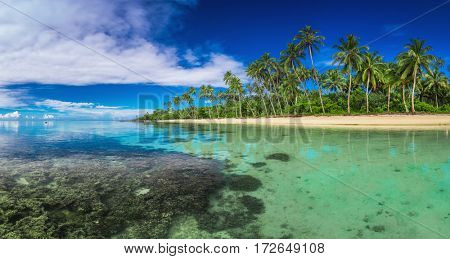 Tropical beach on Samoa Island with palm trees and coral
